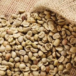 Podnikateľský plán kaviareň a živnosť