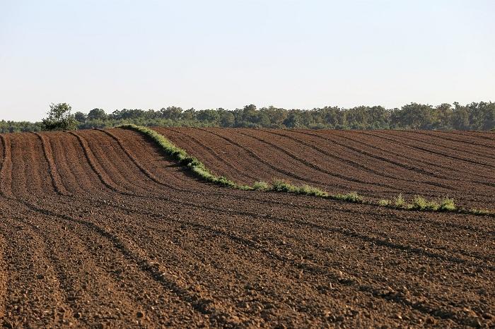 Obrábanie pôdy kedysi a dnes